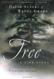 Portada de TREE: A LIFE STORY