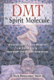 Portada de DMT: THE SPIRIT MOLECULE: A DOCTOR'S REVOLUTIONARY RESEARCH INTO THE BIOLOGY OF NEAR-DEATH AND MYSTICAL EXPERIENCES