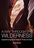 Portada de A WAY THROUGH THE WILDERNESS: EXPERIENCING GOD'S HELP IN TIMES OF CRISIS BY PAULA GOODER (31-OCT-2009) PAPERBACK