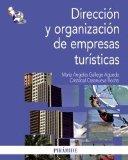 Portada de DIRECCIÓN Y ORGANIZACIÓN DE EMPRESAS TURÍSTICAS (ECONOMIA Y ADMINISTRACION EMPR)
