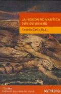 Portada de LA HERIDA ROMANTICA: SALIR DEL ARMARIO