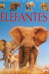 Portada de ELEFANTS