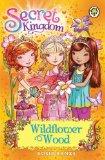 Portada de SECRET KINGDOM: 13: WILDFLOWER WOOD BY BANKS. ROSIE ( 2013 ) PAPERBACK